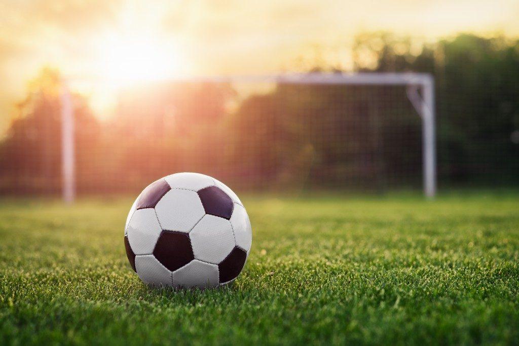 Turfgrass soccer ball field